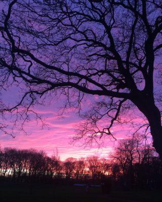 Sunset 30 December 2019